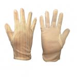 ESD-Lightweight-Gloves.png
